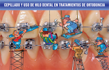 Brushing and Flossing Spanish card(#440-210)